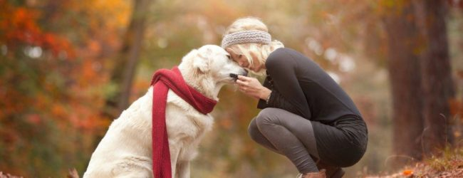 What can a pet say about your Russian woman?